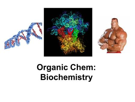 biopolymers essay A macromolecule is a very large molecule, such as protein, commonly created by the polymerization of smaller subunits ()they are typically composed of thousands of atoms or more the most common macromolecules in biochemistry are biopolymers (nucleic acids, proteins, carbohydrates and lipids) and large non-polymeric molecules (such as lipids.