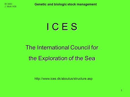 1 BI 3063 J. Mork H08 Genetic and biologic stock management I C E S The International Council for the Exploration of the Sea