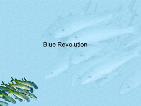 Blue Revolution. Introduction since 1950, there has been a 100 percent increase in demand of fish world consumption of aquatic proteins is predicted to.
