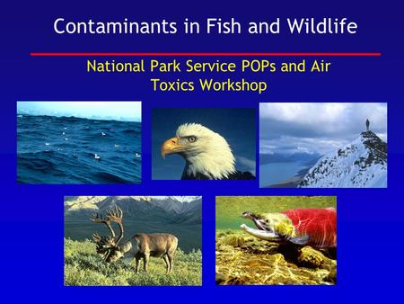 Contaminants in Fish and Wildlife National Park Service POPs and Air Toxics Workshop.