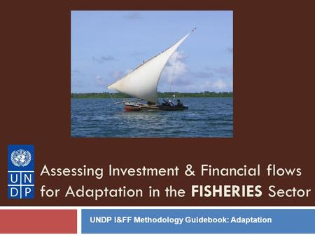 Assessing Investment & Financial flows for Adaptation in the FISHERIES Sector UNDP I&FF Methodology Guidebook: Adaptation.