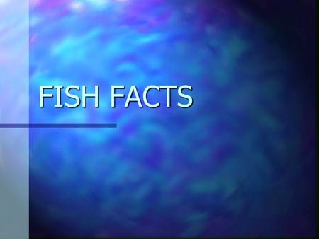 FISH FACTS. PHYLUM CHORDATA Dorsal Notochord-long rod that supports the body- becomes the vertebrae in most. Dorsal Notochord-long rod that supports the.