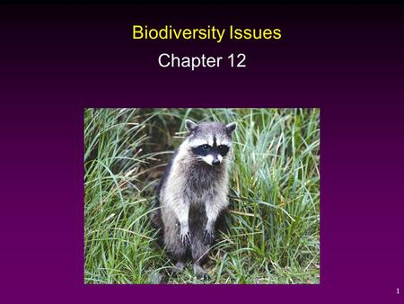 1 Biodiversity Issues Chapter 12. 2 Biodiversity Loss and Extinction Biodiversity is a broad term used to describe the diversity of genes, species, and.
