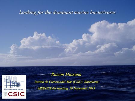 Ramon Massana Institut de Ciències del Mar (CSIC), Barcelona MEDOCEAN meeting, 28 November 2013 Looking for the dominant marine bacterivores.