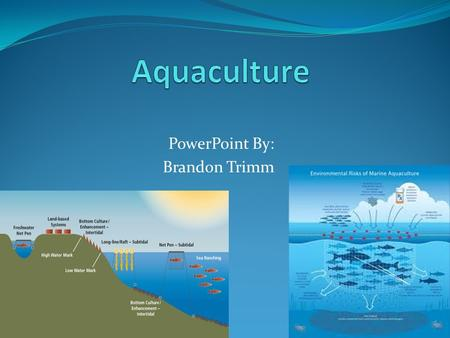PowerPoint By: Brandon Trimm. Aquaculture Also called Aquafarming, aquaculture is the growing and harvesting of marine species in a controlled marine.