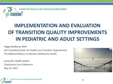 CENTER FOR HEALTH CARE TRANSITION IMPROVEMENT IMPLEMENTATION AND EVALUATION OF TRANSITION QUALITY IMPROVEMENTS IN PEDIATRIC AND ADULT SETTINGS Peggy McManus,