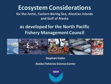 Ecosystem Considerations for the Arctic, Eastern Bering Sea, Aleutian Islands and Gulf of Alaska as developed for the North Pacific Fishery Management.