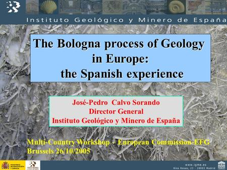 The Bologna process of Geology in Europe: the Spanish experience the Spanish experience José-Pedro Calvo Sorando Director General Instituto Geológico y.