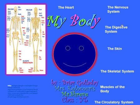 My Body by : Briar Golladay Mrs. Kolocouris Mr.Shreve Class : Y5 The Skeletal System Muscles of the Body The Skin The Nervous System The Digestive System.