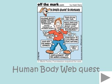 Human Body Web quest. IntroTaskProcessEvaluationConclusionReferences Human Body by Ms. May.