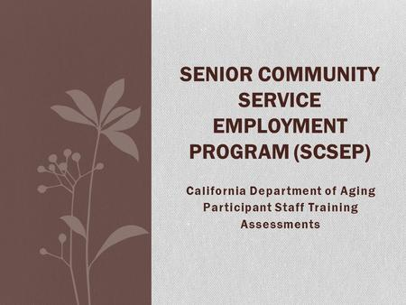 California Department of Aging Participant Staff Training Assessments SENIOR COMMUNITY SERVICE EMPLOYMENT PROGRAM (SCSEP)