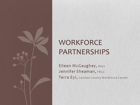 Eileen McGaughey, Aims Jennifer Sheaman, FRCC Terra Eyl, Larimer County Workforce Center WORKFORCE PARTNERSHIPS.