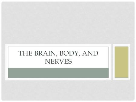 THE BRAIN, BODY, AND NERVES. NERVOUS SYSTEM Central Nervous system (brain and spinal cord) Peripheral Nervous System (Everything else) PNS branches out.