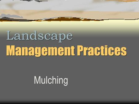 Landscape Management Practices Mulching. Mulch (A tree's best friend)  Insulates soil  Retains moisture  Keeps weeds out  Prevents soil compaction.