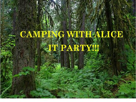 CAMPING WITH ALICE IT PARTY!!!. Bonita Adams – Springfield High School – Camp Questions Jane Nawrocki – Springfield.