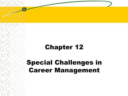 Chapter 12 Special Challenges in Career Management.