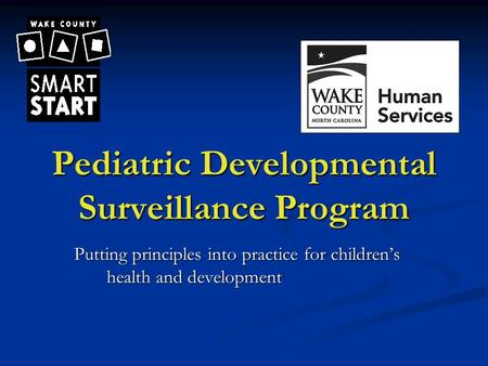 Pediatric Developmental Surveillance Program Putting principles into practice for children's health and development.