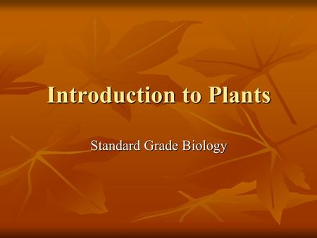 Introduction to Plants Standard Grade Biology. Reproduces sexually Larch cone containing seeds Larch.