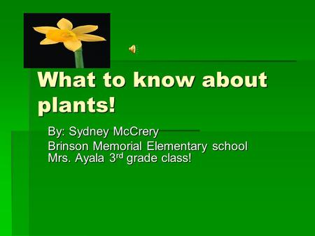 What to know about plants! By: Sydney McCrery Brinson Memorial Elementary school Mrs. Ayala 3 rd grade class!