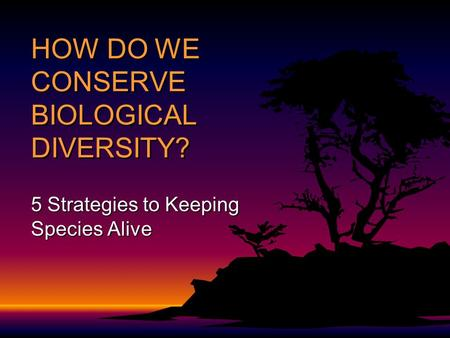 HOW DO WE CONSERVE BIOLOGICAL DIVERSITY? 5 Strategies to Keeping Species Alive.