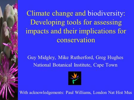 Climate change and biodiversity: Developing tools for assessing impacts and their implications for conservation Guy Midgley, Mike Rutherford, Greg Hughes.