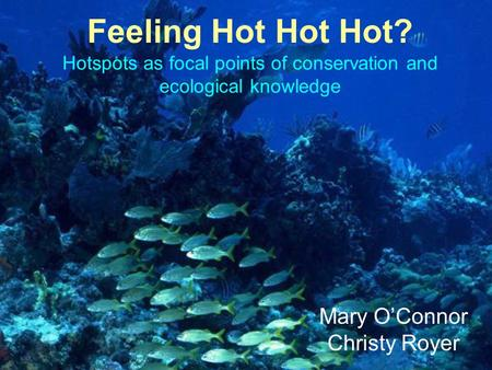 Hotspots as focal points of conservation and ecological knowledge Feeling Hot Hot Hot? Mary O'Connor Christy Royer.