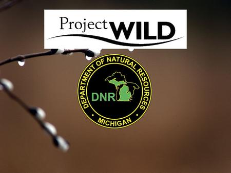Project WILD is: An award-winning, interdisciplinary, conservation and environmental education program that emphasizes wildlife and its habitat. Project.
