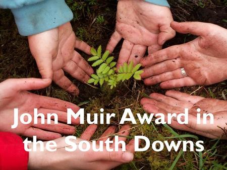 John Muir Award in the South Downs. What is the John Muir Award? An environmental award scheme focused on wild places. It encourages awareness and responsibility.