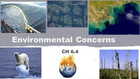 Environmental Concerns CH 6.4. Global Warming Definition: Overall rise in Earth's temperature Cause: Increase in CO 2 other greenhouse gases Effect:
