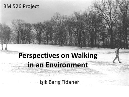 Perspectives on Walking in an Environment Işık Barış Fidaner BM 526 Project.