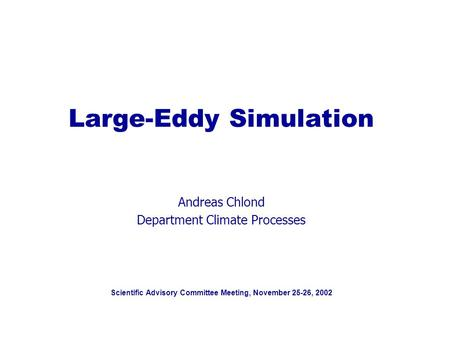 Scientific Advisory Committee Meeting, November 25-26, 2002 Large-Eddy Simulation Andreas Chlond Department Climate Processes.