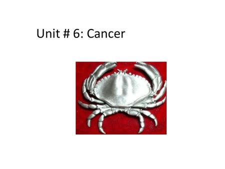Unit # 6: Cancer. Overview 2 nd leading cause of death in Canada. 29% of all mortality in 2000 Higher risk in people over 65, males Leading cause of Potential.