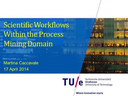 Scientific Workflows Within the Process Mining Domain Martina Caccavale 17 April 2014.