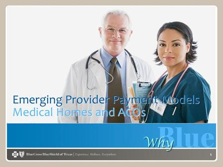 1 Emerging Provider Payment Models Medical Homes and ACOs.