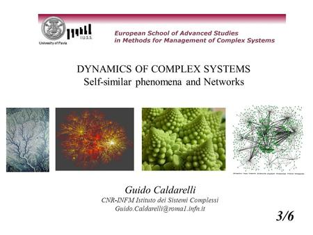 DYNAMICS OF COMPLEX SYSTEMS Self-similar phenomena and Networks Guido Caldarelli CNR-INFM Istituto dei Sistemi Complessi