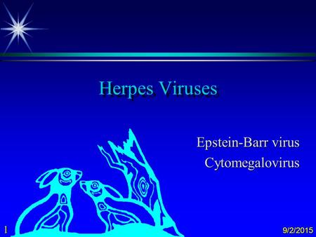 1 9/2/2015 Herpes Viruses Epstein-Barr virus Cytomegalovirus.