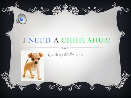 I NEED A CHIHUAHUA! By: Avery Muller 2-7-12 RESPONSIBILITY If I get a chihuahua, it will teach me how to be responsible now and later in life! These.