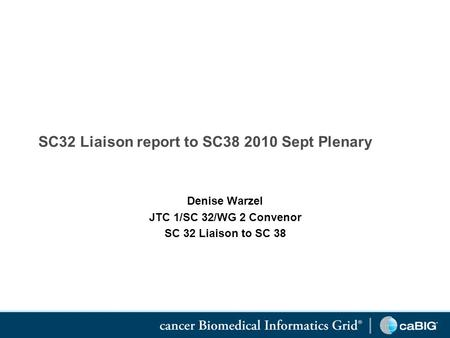 SC32 Liaison report to SC38 2010 Sept Plenary Denise Warzel JTC 1/SC 32/WG 2 Convenor SC 32 Liaison to SC 38.