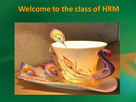 Welcome to the class of HRM. Establishing Strategic Pay Plans Prof. Hiteshwari Jadeja.
