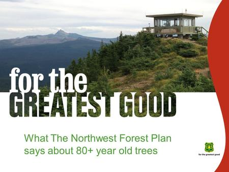 What The Northwest Forest Plan says about 80+ year old trees.