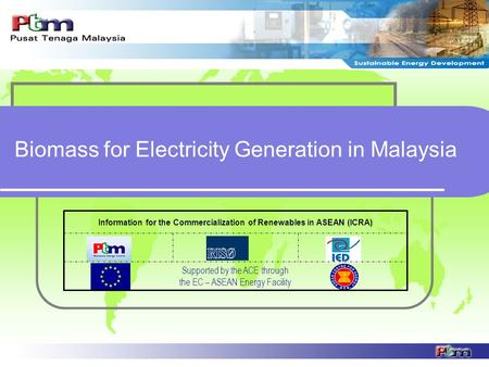 Biomass for Electricity Generation in Malaysia Supported by the ACE through the EC – ASEAN Energy Facility Information for the Commercialization of Renewables.