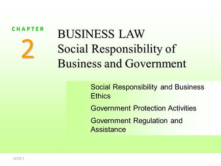 2 BUSINESS LAW Social Responsibility of Business and Government