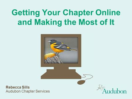 Getting Your Chapter Online and Making the Most of It Rebecca Sills Audubon Chapter Services.