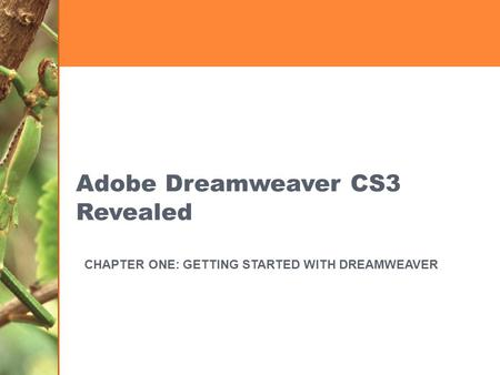 Adobe Dreamweaver CS3 Revealed CHAPTER ONE: GETTING STARTED WITH DREAMWEAVER.