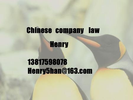 Chinese company law Henry 13817598078