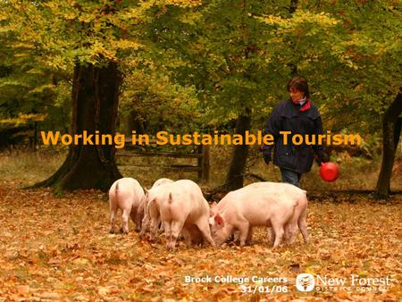 Working in Sustainable Tourism