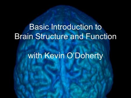 Basic Introduction to Brain Structure and Function with Kevin O'Doherty.