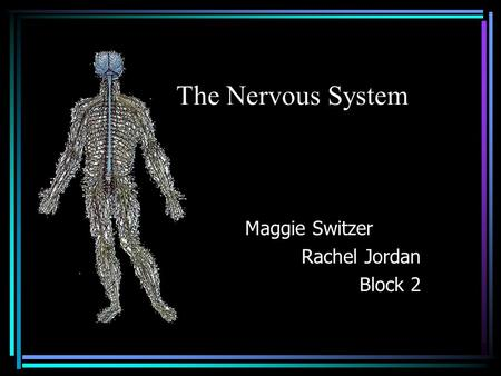 The Nervous System Maggie Switzer Rachel Jordan Block 2.