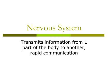 Nervous System Transmits information from 1 part of the body to another, rapid communication.