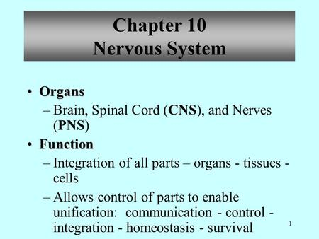 1 OrgansOrgans –Brain, Spinal Cord (CNS), and Nerves (PNS) FunctionFunction –Integration of all parts – organs - tissues - cells –Allows control of parts.
